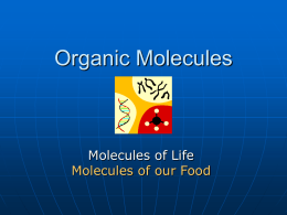 Organic Molecules - University of Dayton