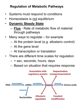 Regulation of Glycolysis - Valdosta State University