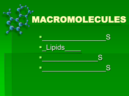 BIOMOLECULES-L2 students