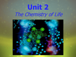 Unit 2 The Chemistry of Life