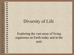 Diversity of Life - Marblehead High School