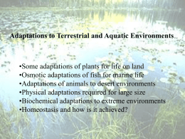Lecture 3-Adaptations to physical environments