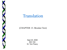Brooker Chapter 13