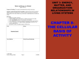 MATTER INTO ENERGY ENERGY INTO MATTER - TJ
