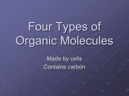 Four Types of Organic Molecules