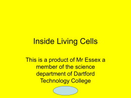 Inside Living Cells - Amazon Web Services