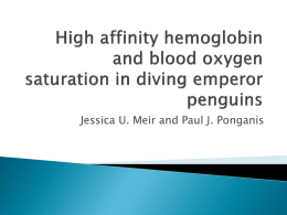 High affinity hemoglobin and blood oxygen saturation in diving