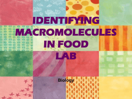Identifying Macromolecules in Food PPT