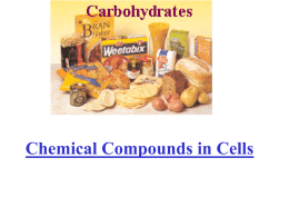 Chemical Compounds in Cells and in Our Food