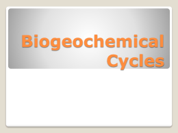 Chemical Cycling