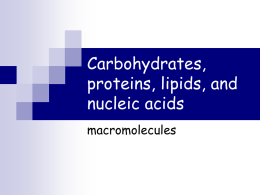 Carbohydrates, proteins, lipids, and nucleic acids