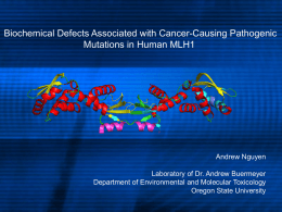 Biochemical Defects Associated with Cancer