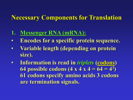 Necessary Components for Translation