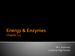 Energy & Enzymes Chapter 2-4
