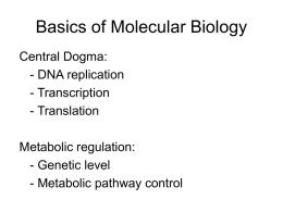 lecture notes-molecular biology-central dogma