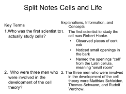 Split Notes Cells and Life October 28, 2013