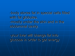 -body stores fat in special cells filled with fat globules.