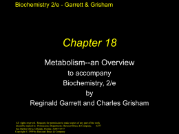 Chapter 18 Slides - University of Virginia