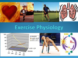 Intro to Exercise Physiology & Energy Systems