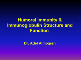 05-Humoral_Immunity__Ig_structure_and_func_2008