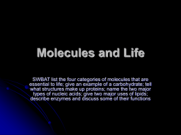 Molecules and Life