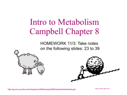 Chapter 8 Metabolism APc8metabolismme (1)