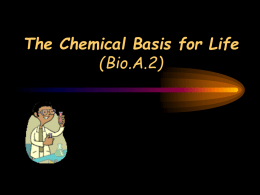 Notes Chemical Basis for Life BIO.A.2