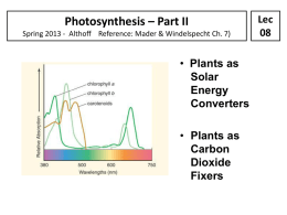 Photosynthesis – Part II
