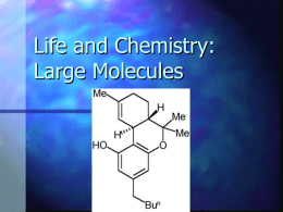 Macromolecules: Their Chemistry and Biology