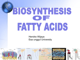 SYNTHESIS OF FATTY ACID Acetyl