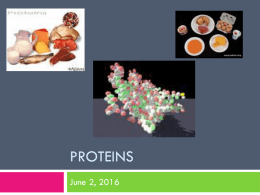 14. Protein Structure notes