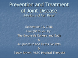 Arthritis pain/prevention/joint disease