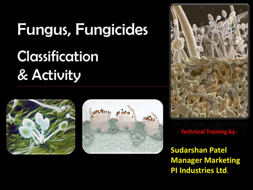Fungicide_PPT Sudarshan Patelx[2] | studyslide com
