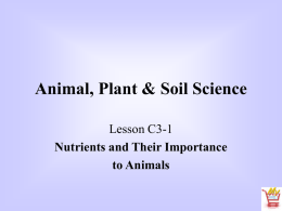 Feed - Animal Science 2