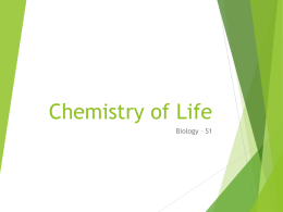 Chemistry of lifex