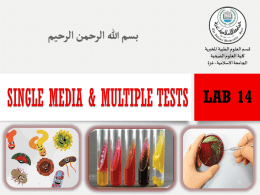Lab-14-Single-Media-Multiple