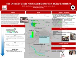 The Effects of Vespa Amino Acid Mixture on - Eco-physlab