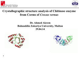 1 Crystallographic structure analysis of Chitinase enzyme from