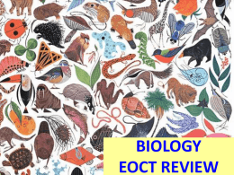 EOCT Review Biology