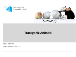 Transgenic Animals - Lungeninformationsdienst