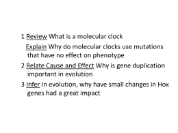 17.4_Molecular_Evolution