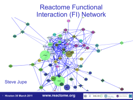 Reactome Functional Interaction (FI) Network