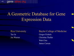Gene expression atlas of the mouse brain