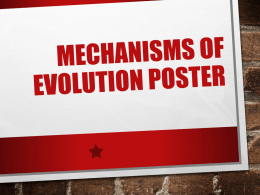 Mechanisms of evolution poster