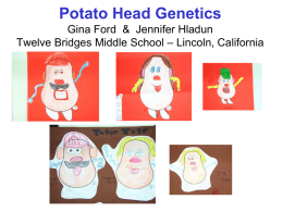 Potato Head Genetics Gina Ford & Jennifer Hladun Twelve