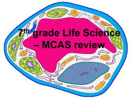 Life Science Review MCAS