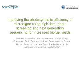Improving the photosynthetic efficiency of microalgae