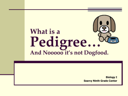 File 1-pedigree