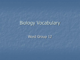 Biology Vocabulary