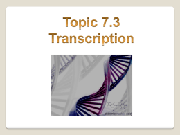 7.3 Transcription (AHL)